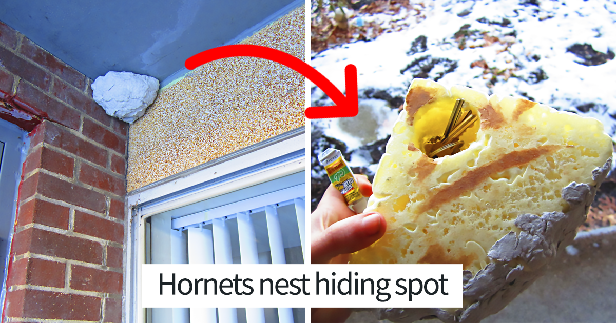 People Are Sharing The Best Hiding Places To Hide Your Valuables From Thieves