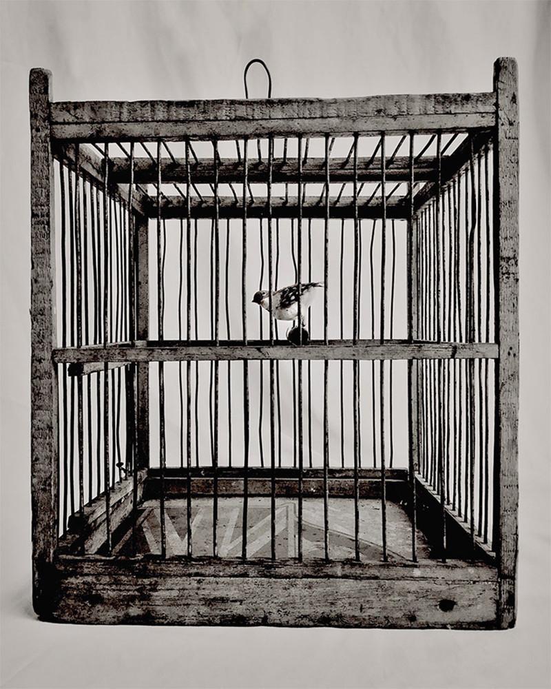 Революция, которую мы не заметили айфоны, искусство, прогресс, фотография, фотографы