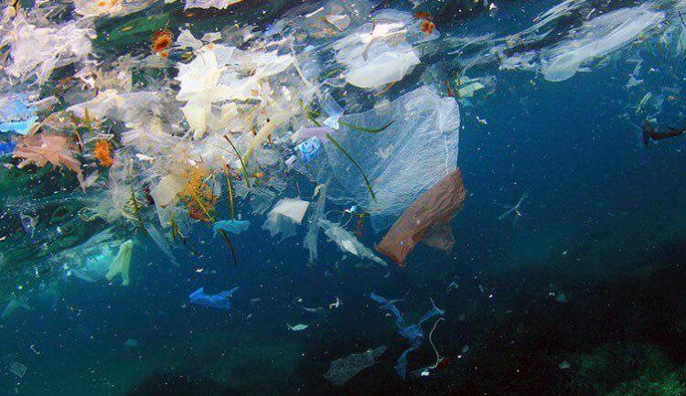 5 способов использовать бывший в употреблении пластик без вреда для окружающей среды