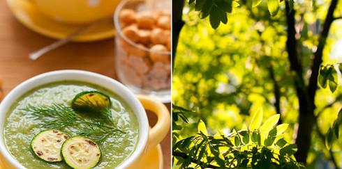 Суп из молодых кабачков с базиликом