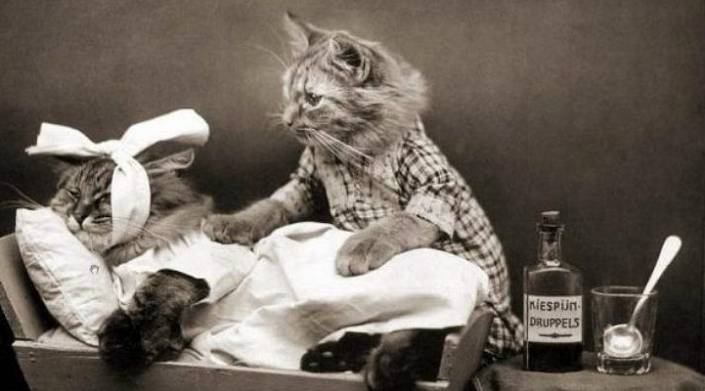 «До смерти ещё дожить надо»: 15 шуток о здоровье