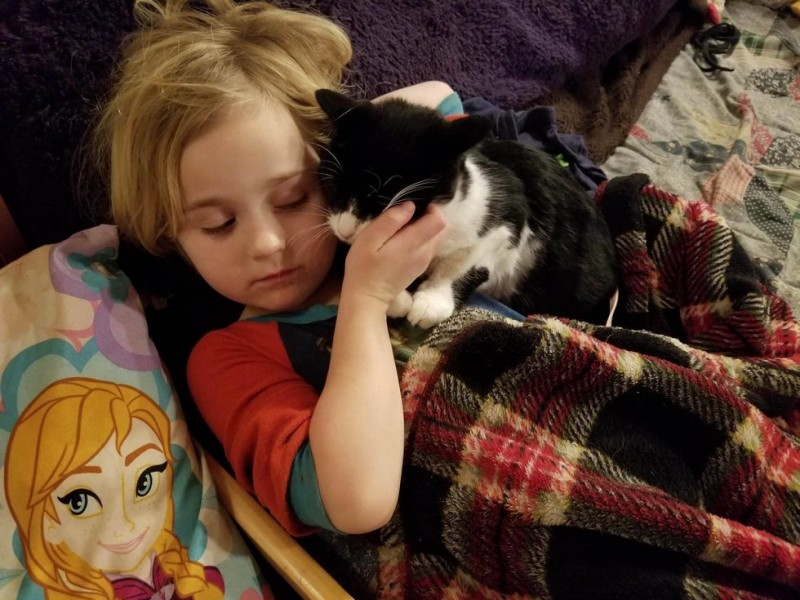 Дружба с маленькой девочкой помогла коту обрести душевный покой