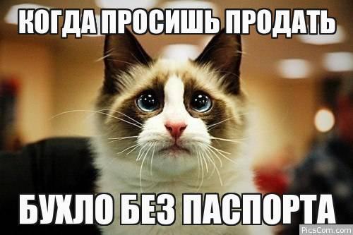 15 литров в год в одни руки: В России запретят продавать алкоголь 21-летним