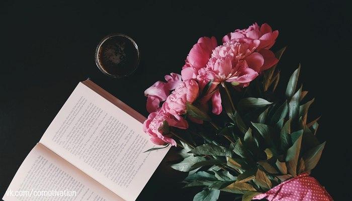 5 книг в помощь тем, кто хоч…