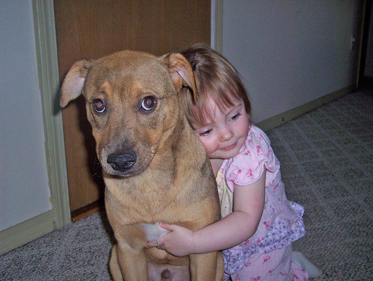 Что не любят собаки, а мы продолжаем это делать