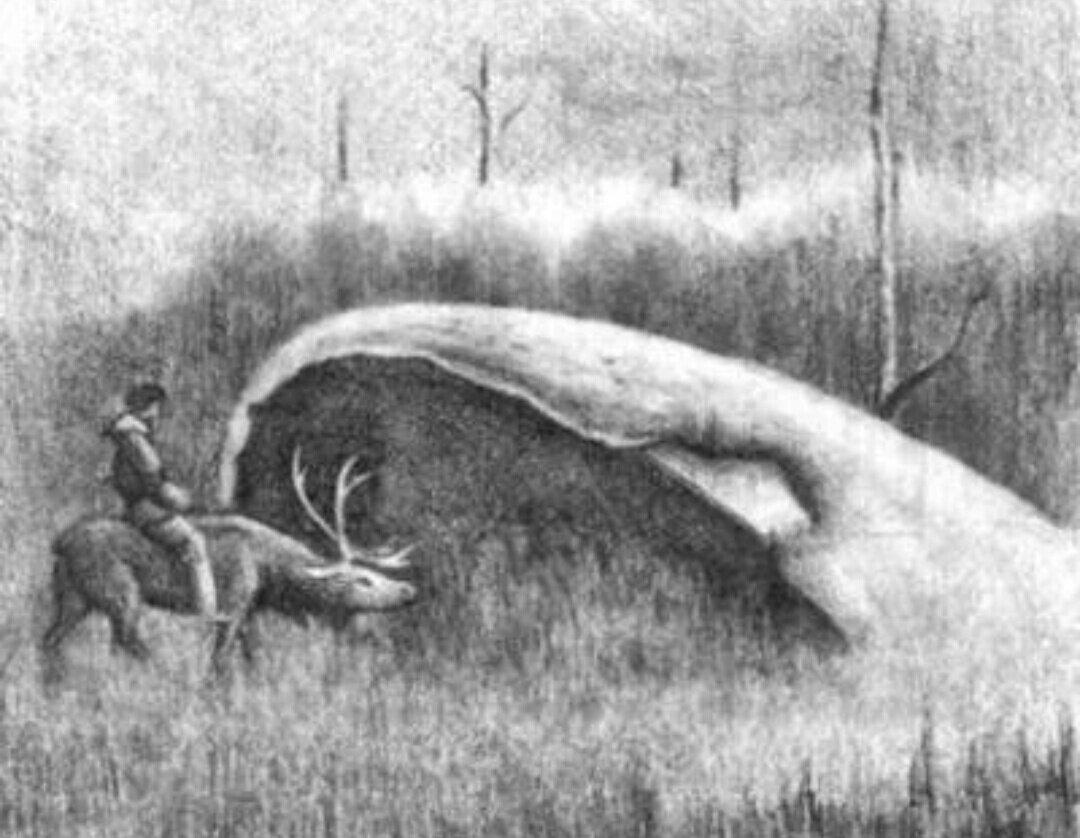Долина Смерти. Огромные котлы неземного происхождения. Часть I