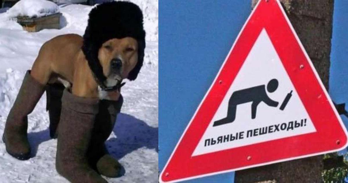 Такое бывает только в России. Суперподборка!