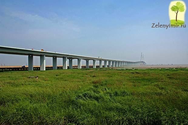 Мост через залив Ханчжоувань - один из самых длинных мостов мира - 5