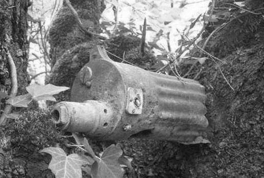 Как «стреляющий дуб» сдерживал наступление немцев