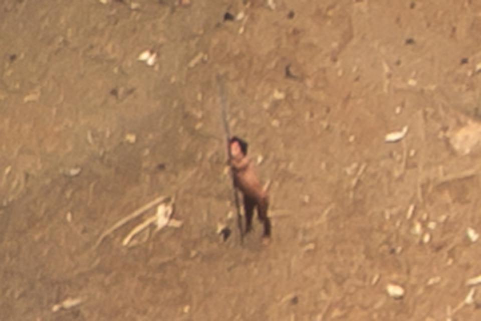 Невероятные кадры амазонского племени, которое никогда не контактировало с цивилизацией