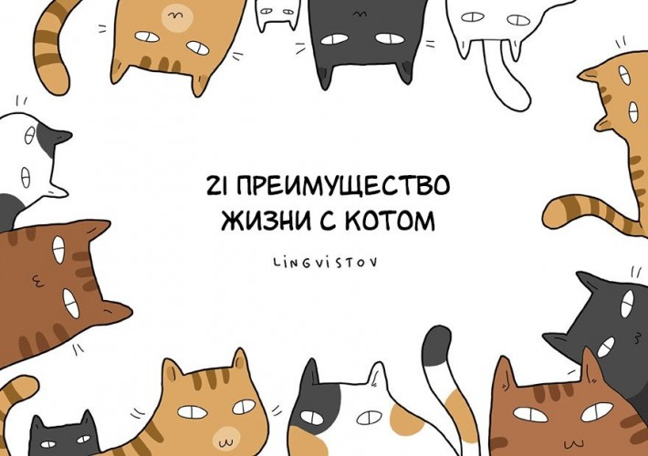 Преимущества жизни с котом
