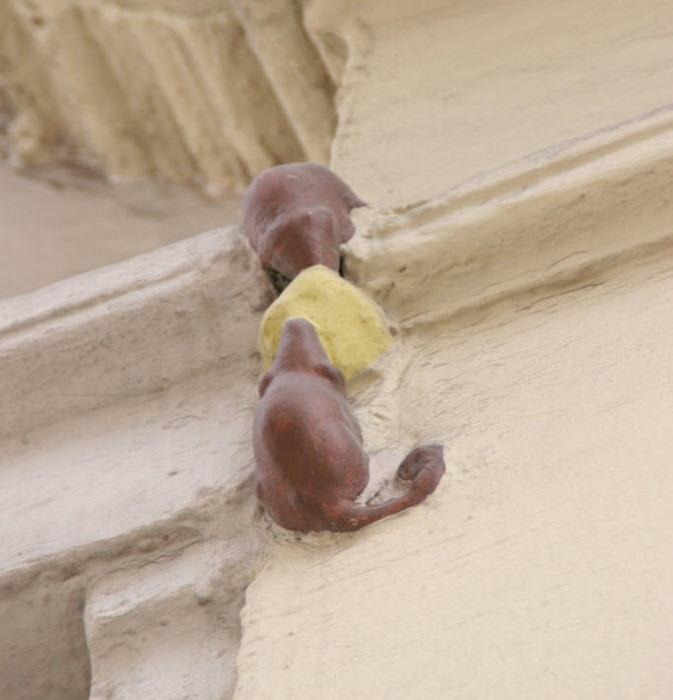Две мыши, которые дерутся за кусок сыра
