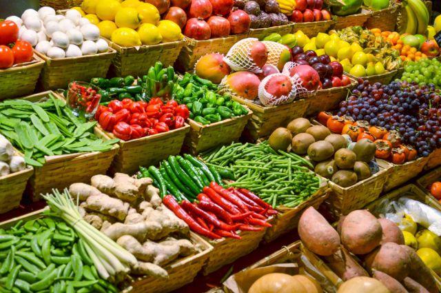 Россия будет выращивать сельхозпродукцию в Таджикистане