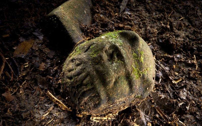 Потрясающие находки Экспедиция, посланная на разведку, вернулась на прошлой неделе и принесла ошеломляющую весть. Ее члены в ходе раскопок извлекли из земли 52 артефакта, в том числе голову статуи, сочетавшей в себе черты человека и ягуара. Сопоставив факты, археологи пришли к выводу, что в данной области могла существовать целая цивилизация с развитой сетью дорог и инфраструктурой.