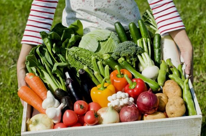 Хороший урожай: 5 золотых правил огородника
