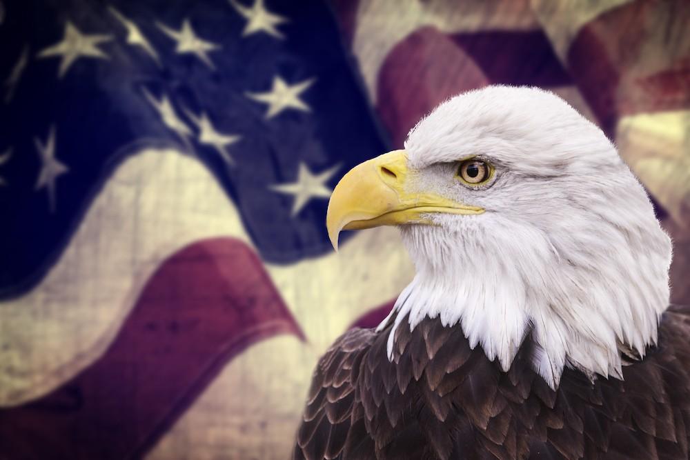 Александр Роджерс: Беззащитные жертвы для США закончились
