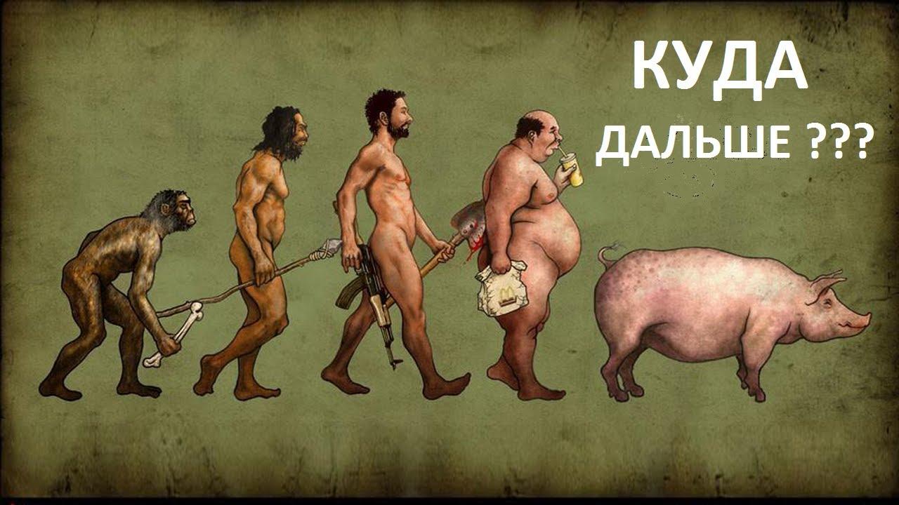 Эволюция глупости