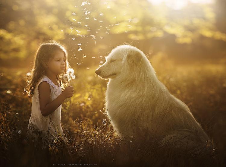 Трогательная дружба детей и животных в удивительных фотографиях Елены Шумиловой
