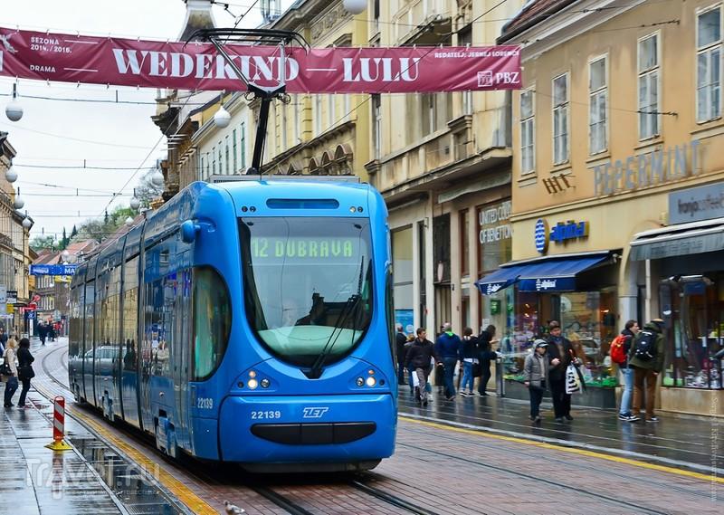Следуя за синим трамваем…
