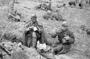 Сухари и сосиски. Чем кормили советских солдат в Великую Отечественную