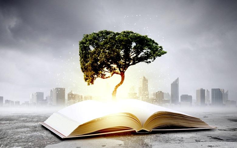 Растения – такие же мыслители, как и мы