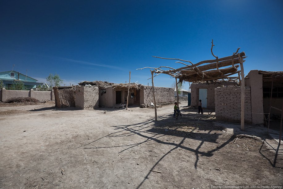 Природа Узбекистана: где живут узбеки