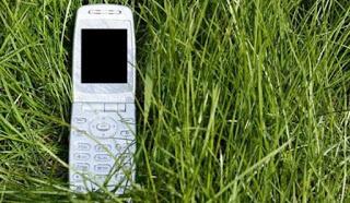 Как выжить в лесу с одним мобильным?