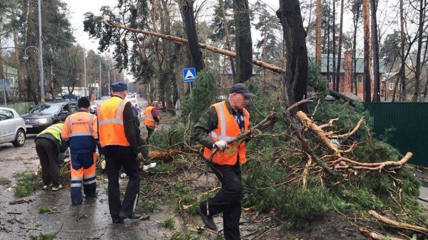 Ураган в Москве: за медицинс…