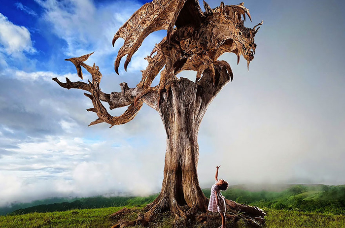 Крылатые драконы из обыкновенных коряг: чудеса работы с деревом