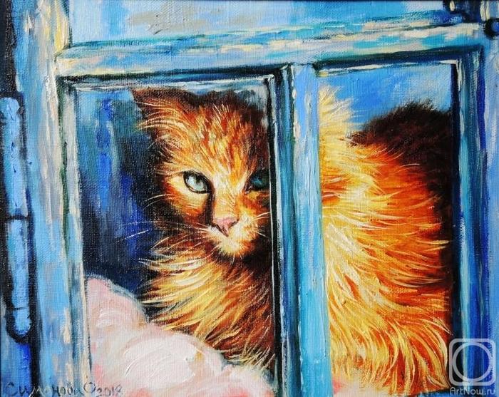 Кошка у окошка (700x557, 364Kb)