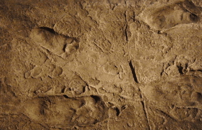 Невероятные археологические находки и их поразительные секреты