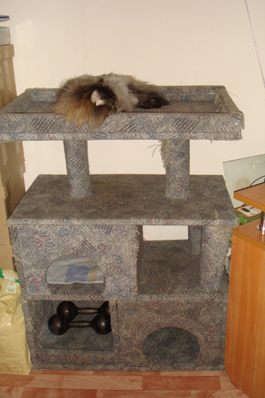Дом для кошки круглый своими руками