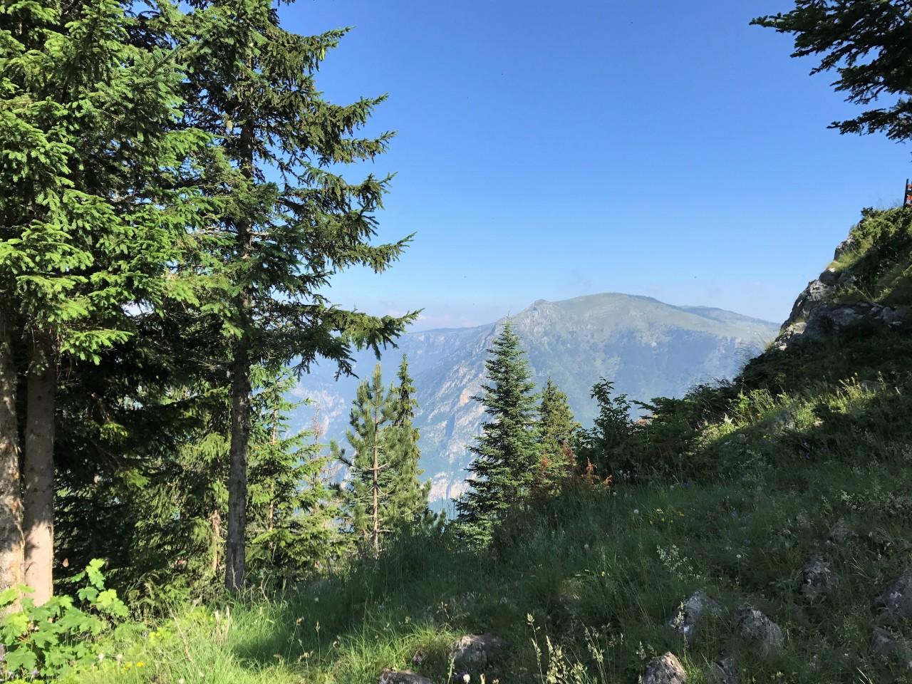 По горам и лесам Черногории. День второй.