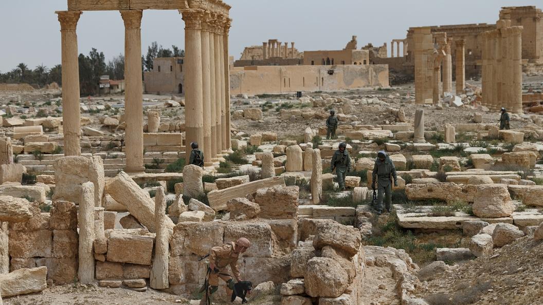 Топ фейк-новостей о предстоящей войне в Сирии