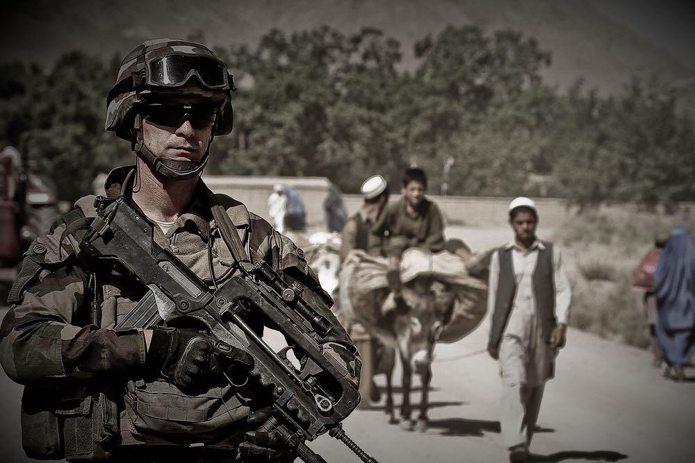 Американский осёл заблудился в афганских горах
