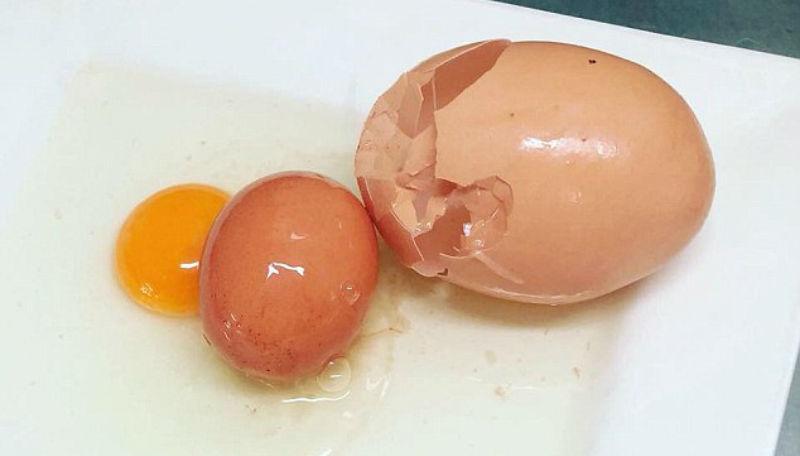 Яйцо-матрешка: в Австралии обнаружили огромное куриное яйцо с сюрпризом внутри
