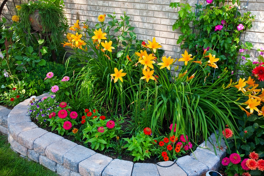 Старайтесь размещать самые яркие и высокие цветы в центре клумбы, низкорослые растения рассадите вокруг