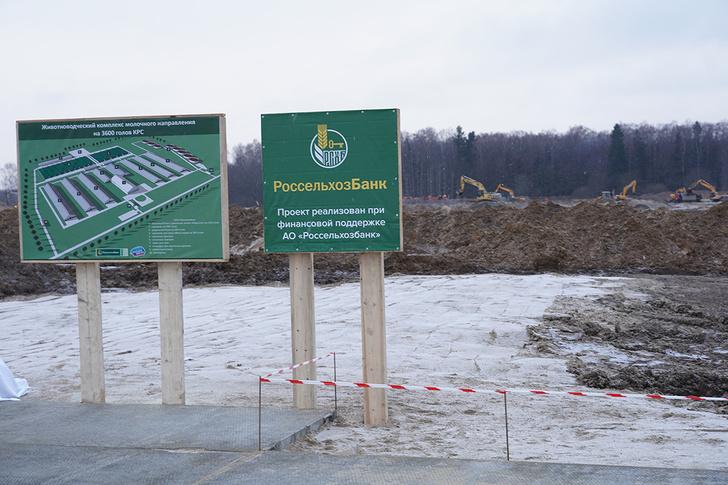 В Калининградской области на…