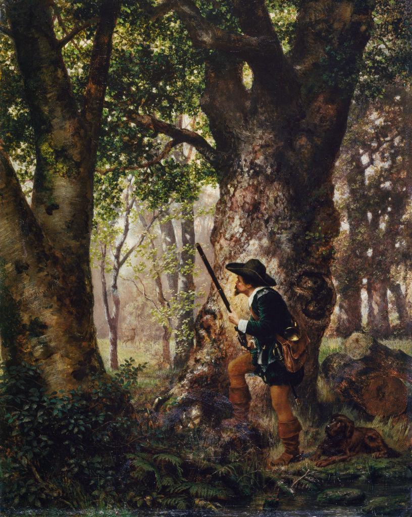 Зловещие деревья: 7 лесов из…