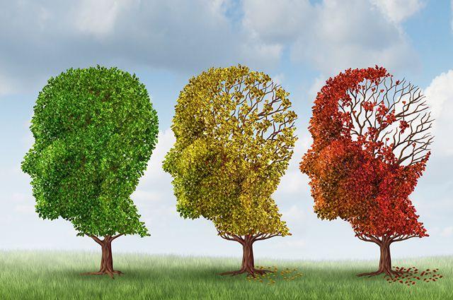 Вспомнить всё! Четыре шага к укреплению памяти