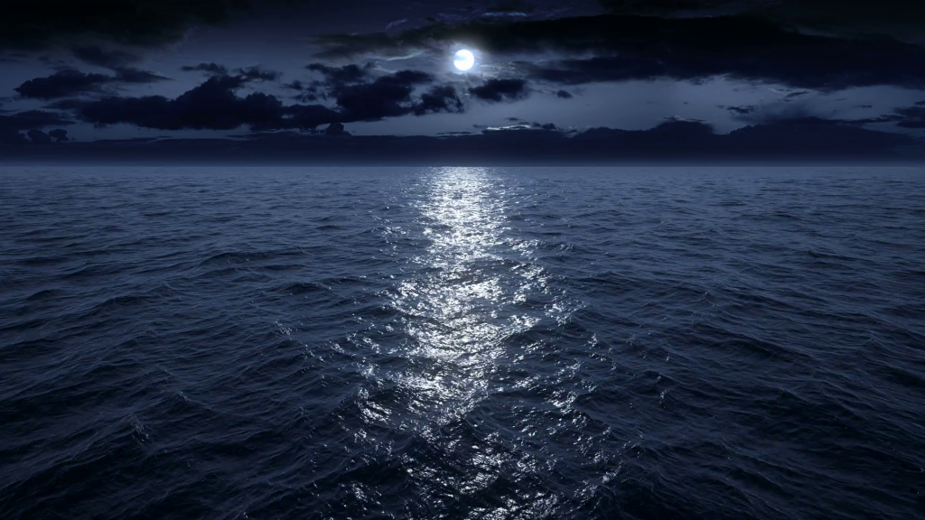 Что происходит в океане ночью?