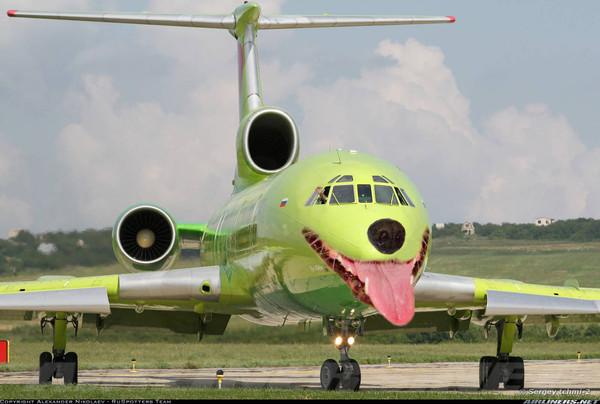 Боитесь ли вы летать на самолете?