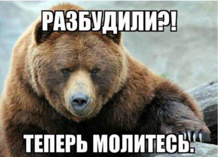 Европа будит медведЯ