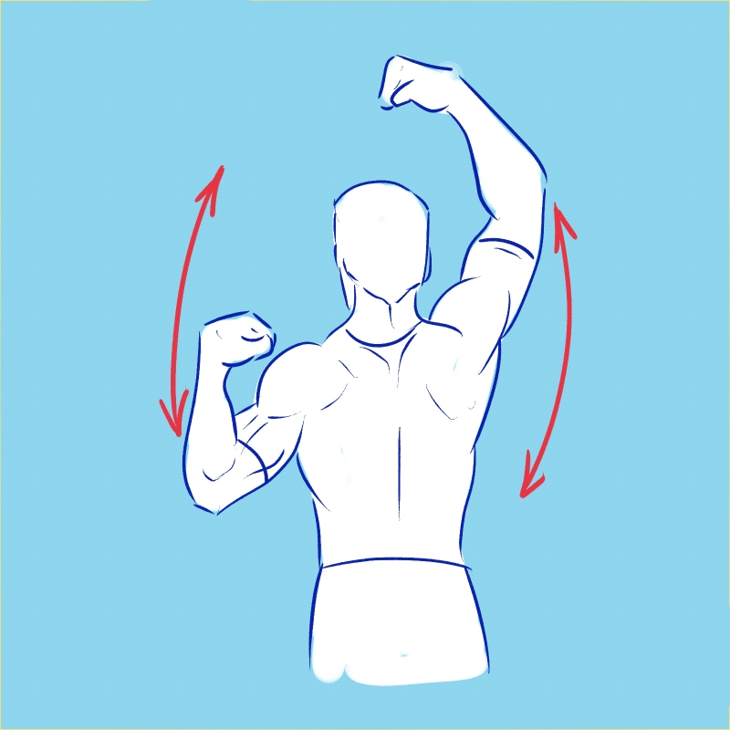 силовая гимнастика тренировки