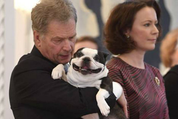 Собака-улыбака президента Финляндии покорила интернет