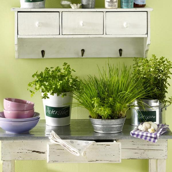Декоративные цветы для кухни