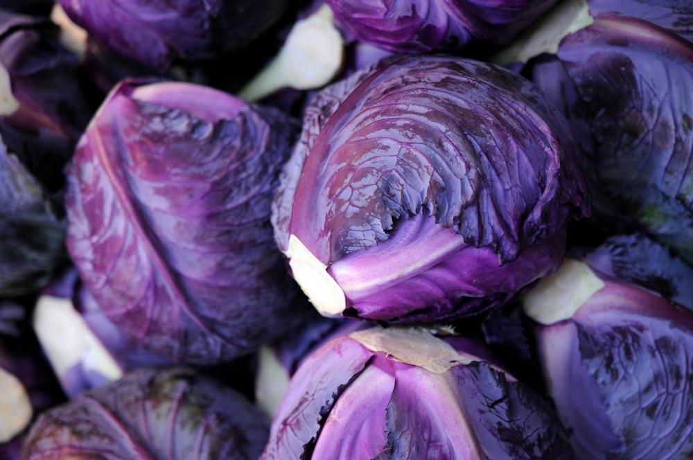 как называется фиолетовая капуста