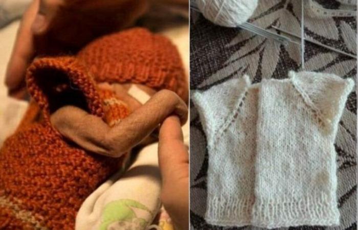 Клуб «28 петель»: Как неравнодушные вязальщицы из Беларуси спасают недоношенных малышей