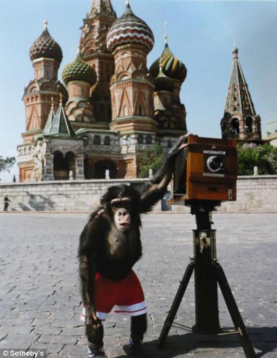 Микки, которого Виталий Комар и Александр Меламид учили делать фотографии на Красной площади.
