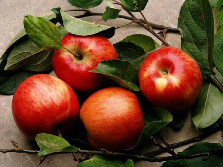 Яблоко против целлюлита